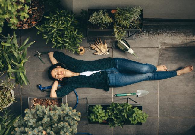 O que é jardim sensorial e porque você deveria montar um na sua casa