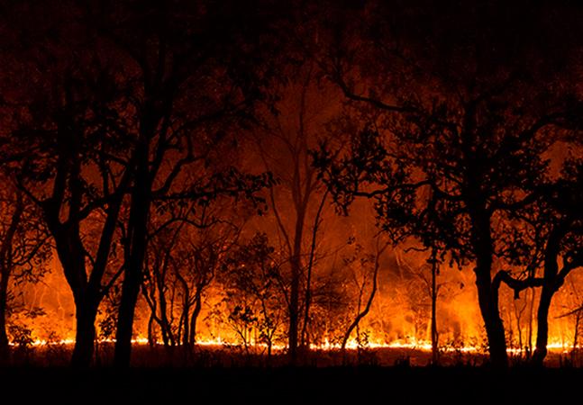 Greve global pelo clima está marcada para o dia 19 de março