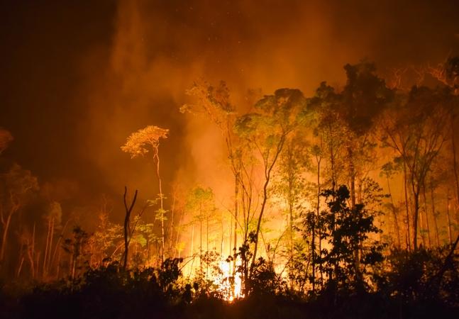 Desmatamento na Amazônia leva Cantareira ao pior nível desde crise hídrica de 2013