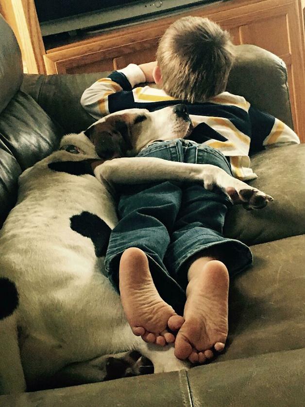 criança deitada com cachorro