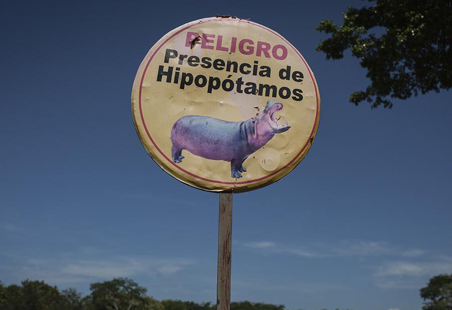 Placa alertando sobre a presença de hipopótamos na região