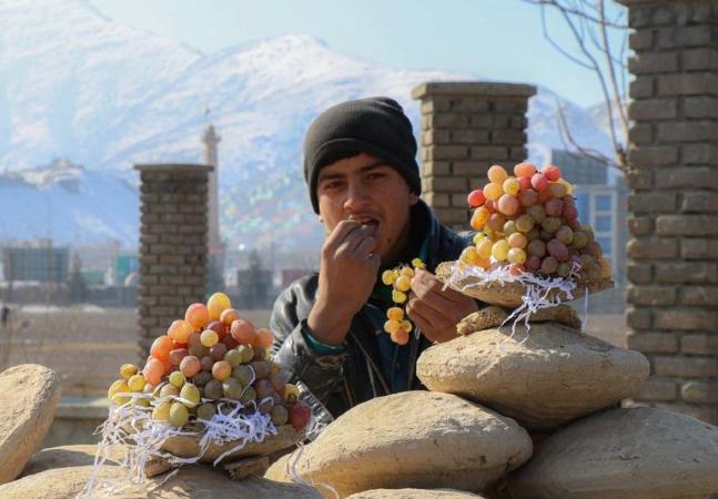 Gangina: a técnica afegã que mantém uvas frescas por até seis meses