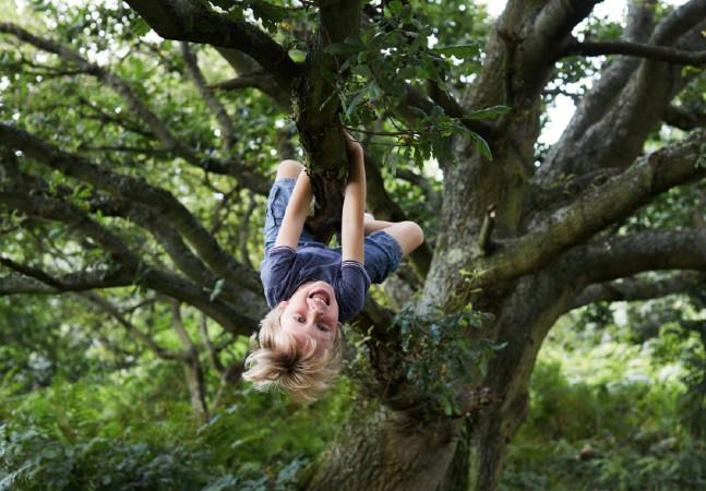 Contato com a natureza torna crianças mais calmas, aponta estudo