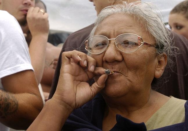 Estudo associa uso medicinal da maconha com redução da pressão arterial em idosos