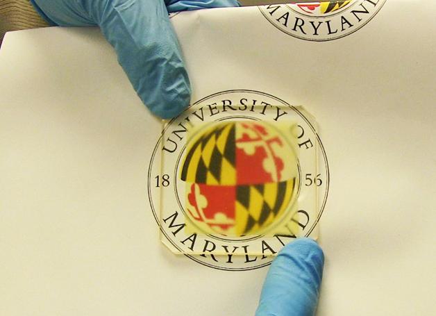 A madeira transparente desenvolvida pela Universidade de Maryland