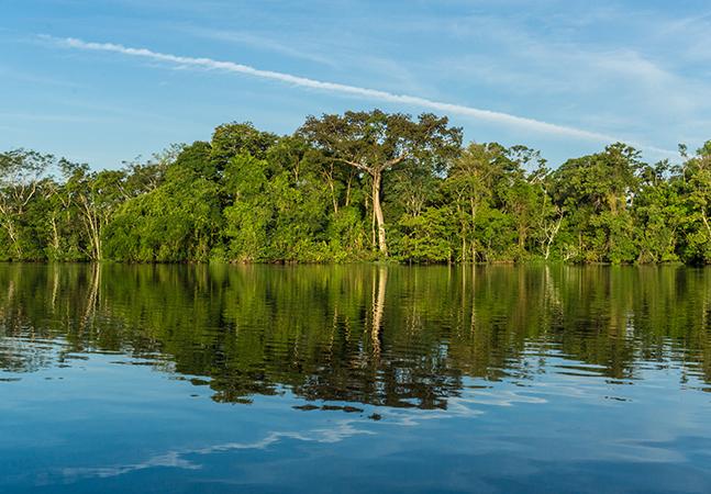 Pesquisa do IBOPE confirma: brasileiros se preocupam (e muito) com o meio ambiente