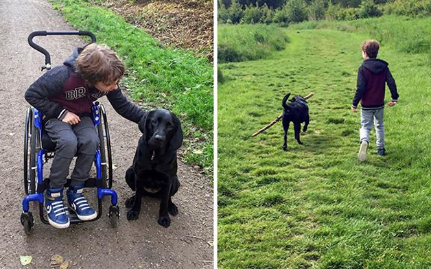 Criança cadeirante e seu cão de apoio