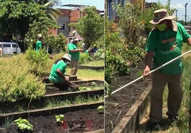 Favela do RJ é dona da maior horta comunitária da América Latina, mostra Voz das Comunidades