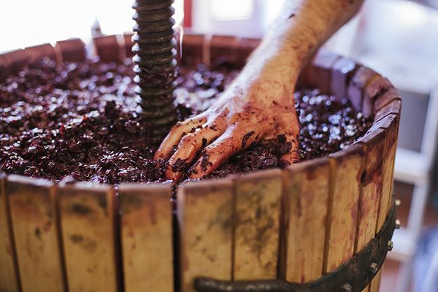 Moedor de uva em fábrica de vinho