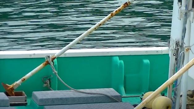 Barra de ferro martelada na lateral dos barcos para torturar os golfinhos na água
