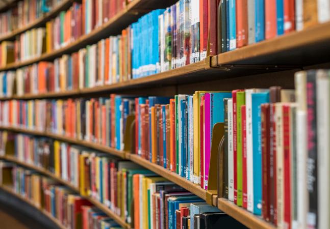 Covid: Portugual cria delivery de livros durante lockdown