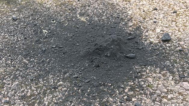 O meteorito de Winchcombe