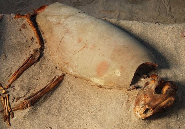 Egito descobre cemitério de 2 mil anos com 600 cães e gatos