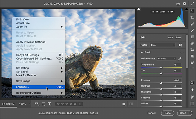 Tela do Adobe Camera Raw para Super Resolution