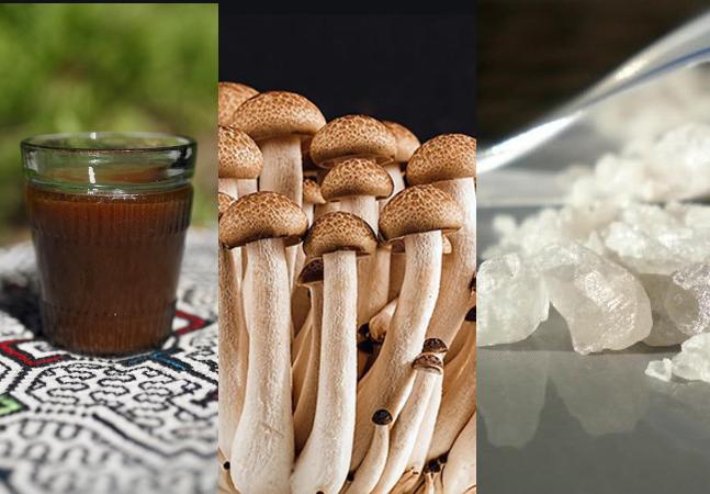 Brasil lidera frente mundial de pesquisa sobre uso medicinal de LSD, cogumelos, MDMA e Ayahuasca
