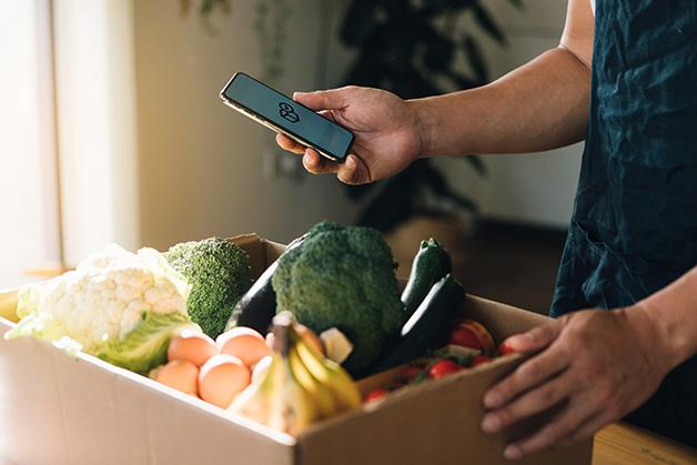 Caixa de frutas e legumes comprada online