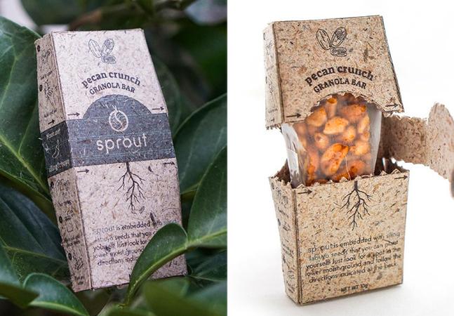 Coroa de abacaxi vira matéria-prima para a produção de embalagem plantável