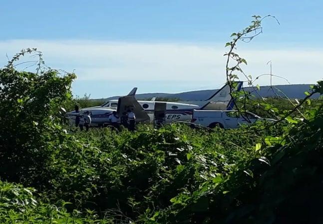 Avião com vacinas contra a covid-19 bate em jumento na BA; animal, que de burro não tem nada, se feriu
