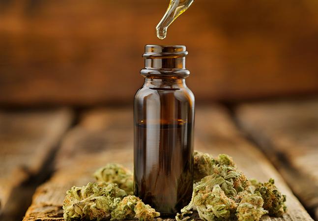 Maconha medicinal breca disseminação de covid-19 em células do pulmão, diz estudo