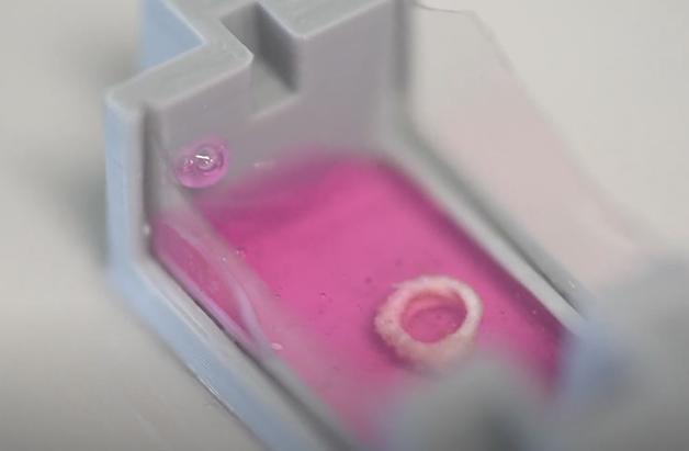 A impressão em 3D de cálcio da University of New South Wales
