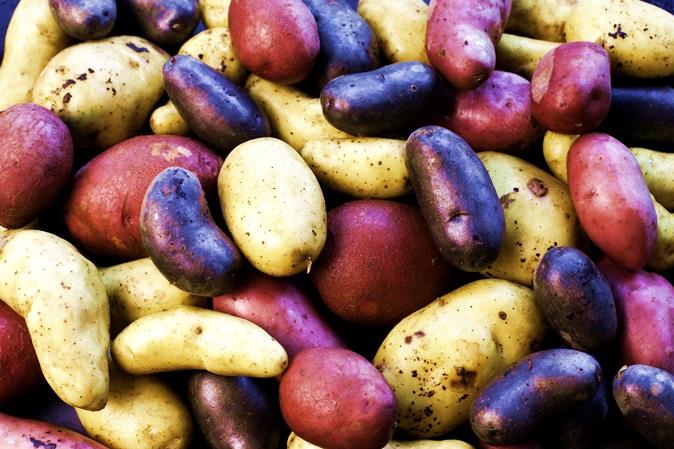 Batata: encantos do alimento símbolo da América do Sul