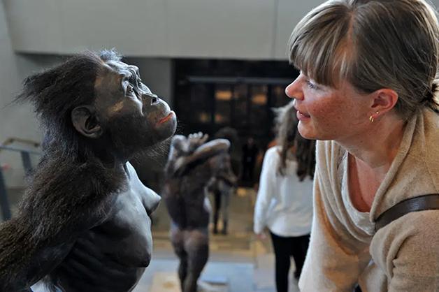 """Representação de """"Lucy"""" em um museu"""