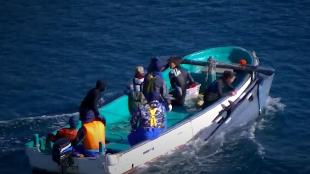 Barco de caça de golfinhos