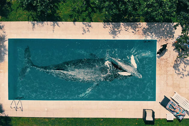 "Cena do curta ""Anywhere can Happen"", de Fernando Livschitz"
