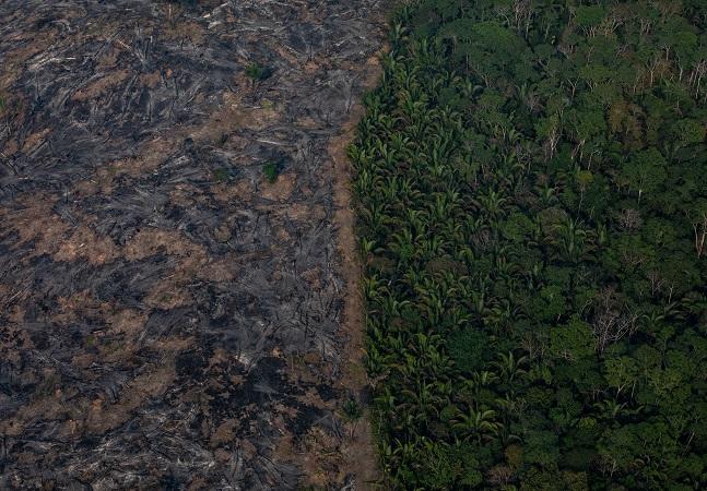 Sustentabilidade ambiental passa por respeito à terra e seus protagonistas