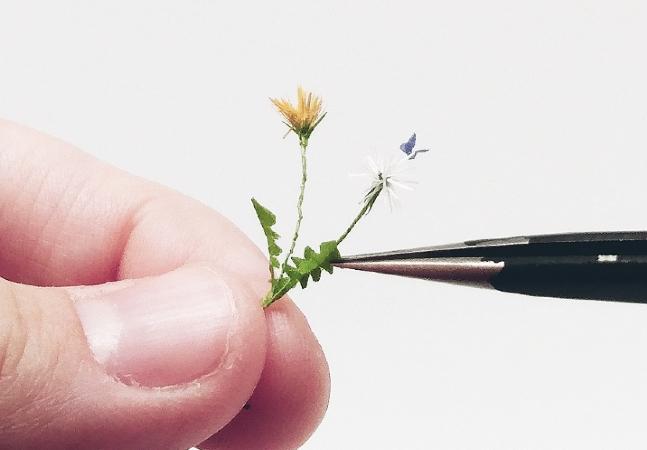 Sustentabilidade e arte unidas em miniaturas fofas e criativas