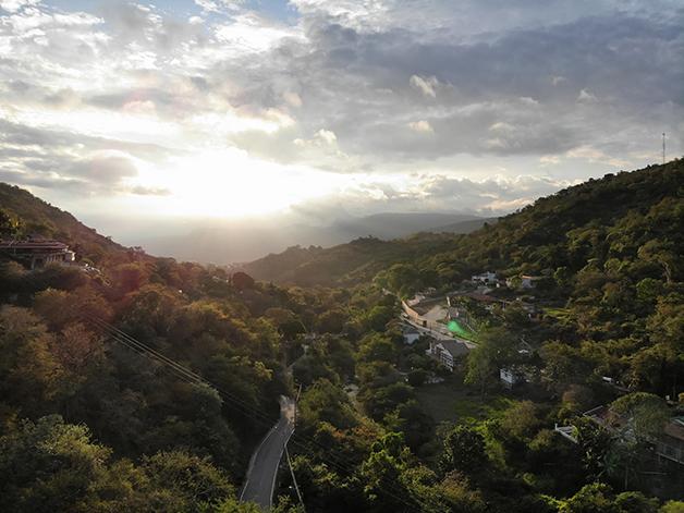 Floresta colombiana