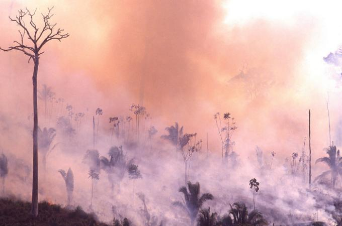 Fumaça de queimadas gerou quase R$ 1 bi de gastos com internações para estados amazônicos