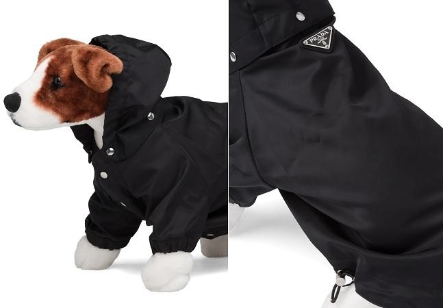 Prada lança casaco impermeável para cachorro de R$ 2,7 mil