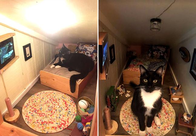 Gato ganha seu próprio quarto nessa casa. Com direito a cama e mobília
