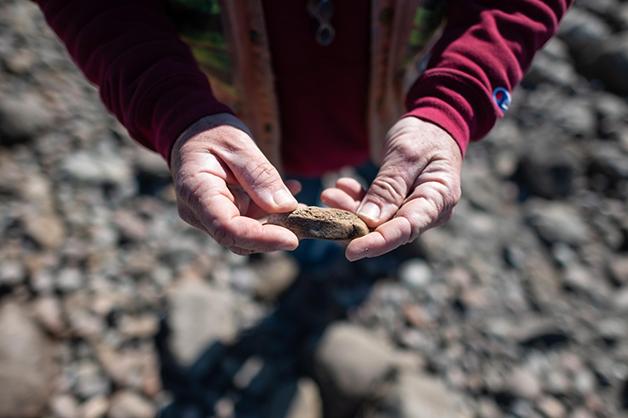 Fóssil descoberto na Califórnia