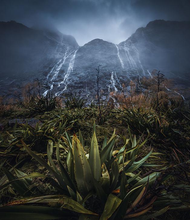 Natureza da Nova Zelândia