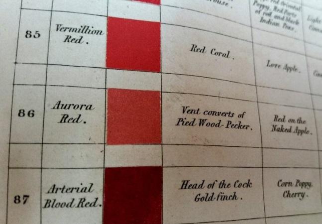Dicionário do século 19 tem descrições poéticas das cores da natureza