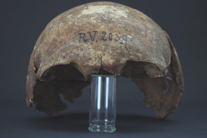 Ciência encontra esqueleto de 1º infectado pela peste bubônica, morto há 5 mil anos