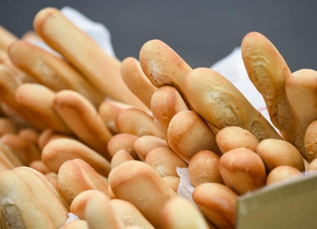 Trigo transgênico: veneno no pão a um passo da liberação; especialista vê brasileiros cobaias