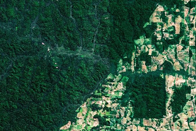 Com florestas transformadas em pastos, município do Pará tem alta de temperatura
