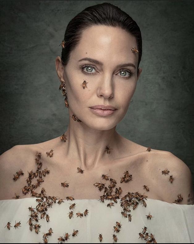 Angelina Jolie em ensaio com abelhas