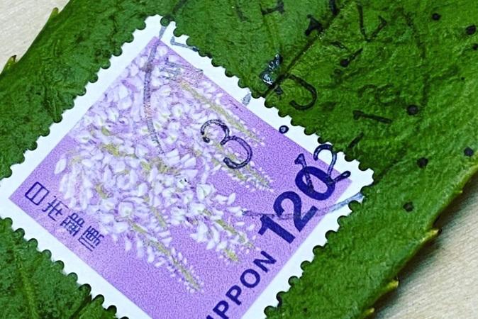 No Japão, é possível mandar cartas escritas em folhas de árvores pelo correio