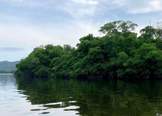 Lagoa em Puerto Escondido, no México