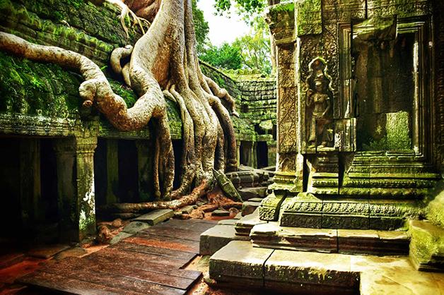 Detalhe do templo de Ta Prohm