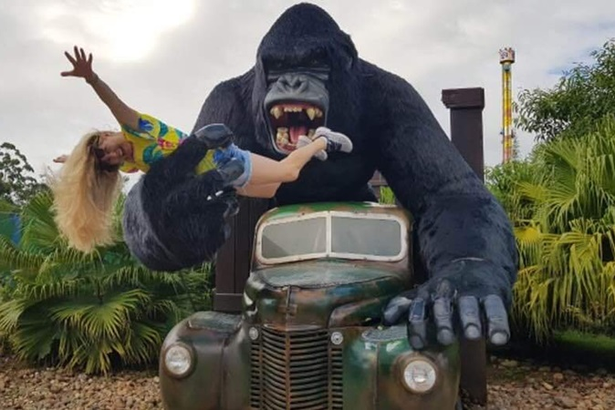 Beto Carrero: menino que caiu de gorila está em estado grave; família fez vaquinha para ir ao parque