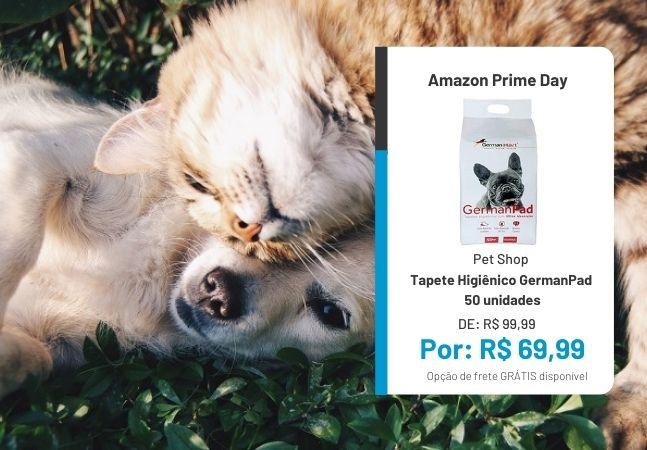 Cachorros e gatos: o Prime Day tem ofertas para o seu pet também!