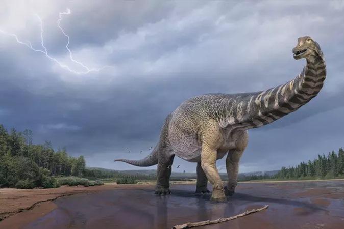 Uma das maiores do mundo, nova espécie de dinossauro viveu há quase 100 milhões de anos