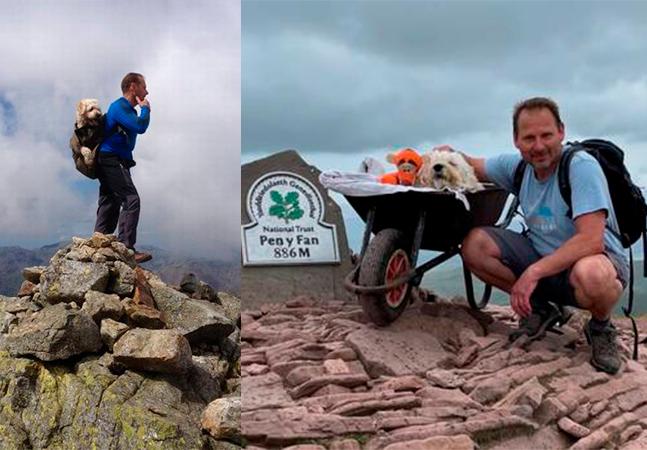 Cachorro ganha passeio de despedida até topo de montanha preferida