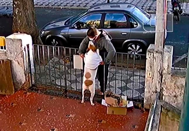 Homem filmado roubando roupa de inverno de cachorra causa indignação