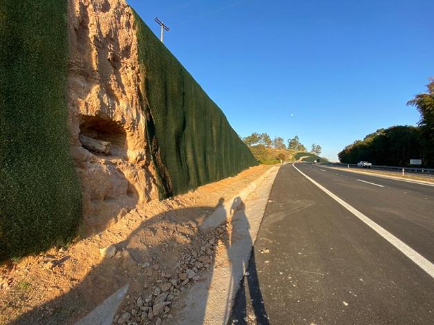 Fóssil descoberto em Marília
